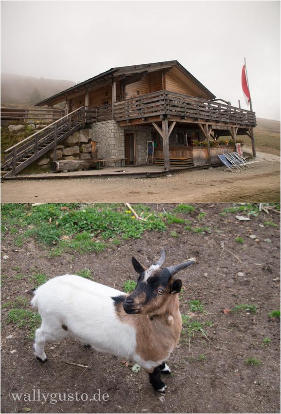 Südtirol Ochsenhütte