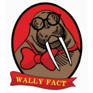 Wally Fact