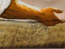 semeando a palavra