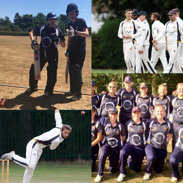 Male and female cricketers