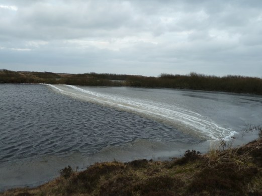 P1020260 Ice path on pond - Copy