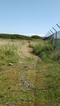 Coastal path along airfield fence cleared August 2019 (1) - Copy