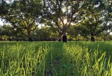 harvest-best-practices