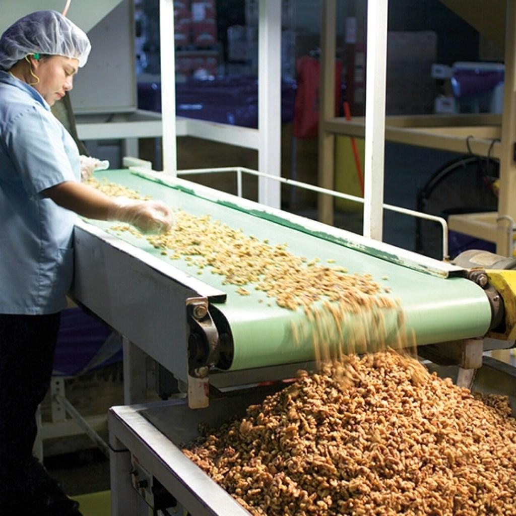 screen separate walnuts