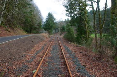 The soon-to-come Salmonberry Trail near Walnut Studiolo