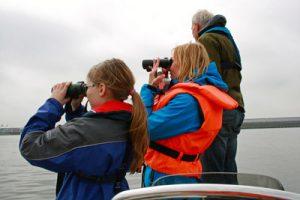 Schweinswalsuche in der Elbe: mit dabei die interessierte junge Journalistin Rebecca Sch. (15 Jahre) und die Dipl.-Biologin Denise Wenger, beide halten von einem Zodiac aus stehend mit Ferngläsern Ausschau nach Schweinswalen