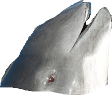 Schweinswal auftauchend