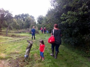 ORCHARD ADVENTURE 27TH AUGUST 2014