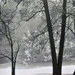 Landscape 3 by walter huber