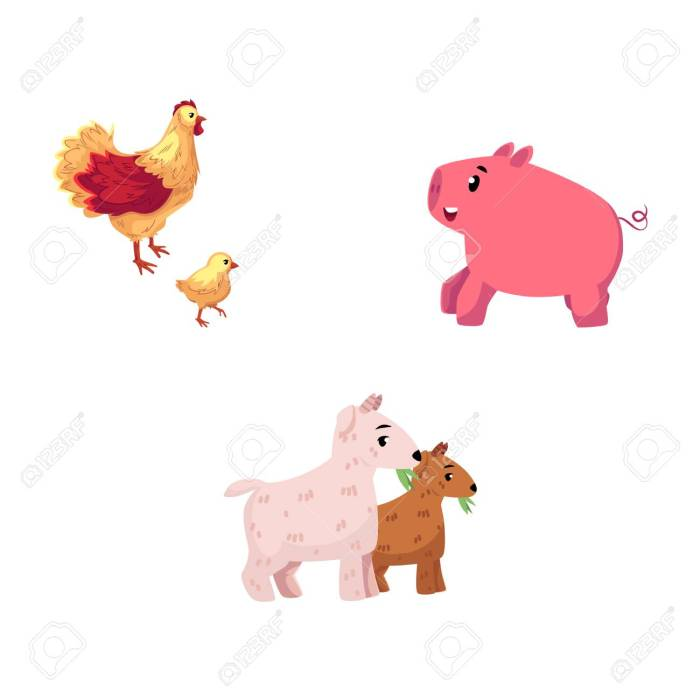 Set of cartoon farm animals - chicken, pig, goat