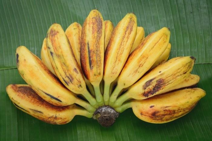 Saba-Banana-or-Cardava-Banana