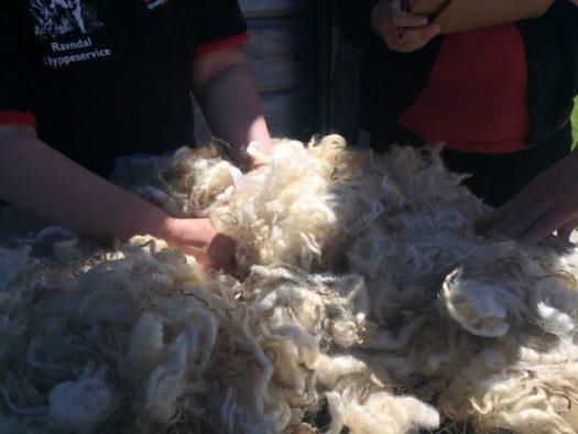Hands feeling a fleece