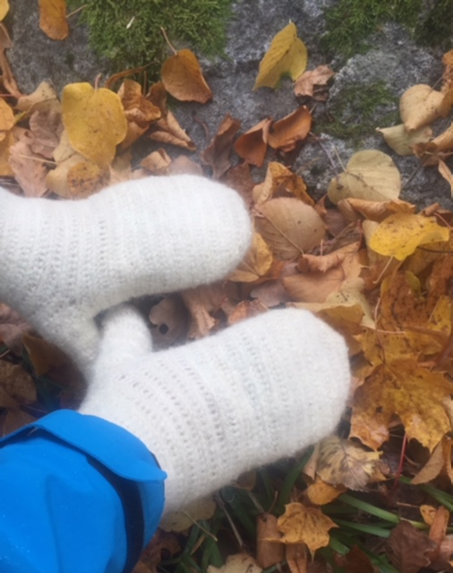 A pair of hands in nalbinding mittens in autumn leaves