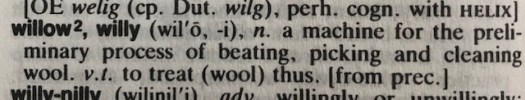 The definition of the word willow, willy: