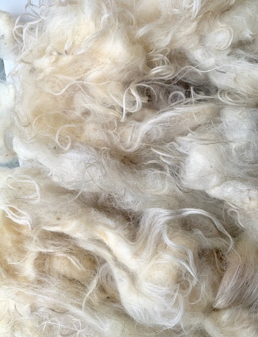 Lovely Åsen wool from an experienced shepherdess.