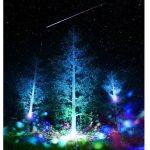 福徳の森イルミネーション2016-2017は流れ星とコラボ!時間は?