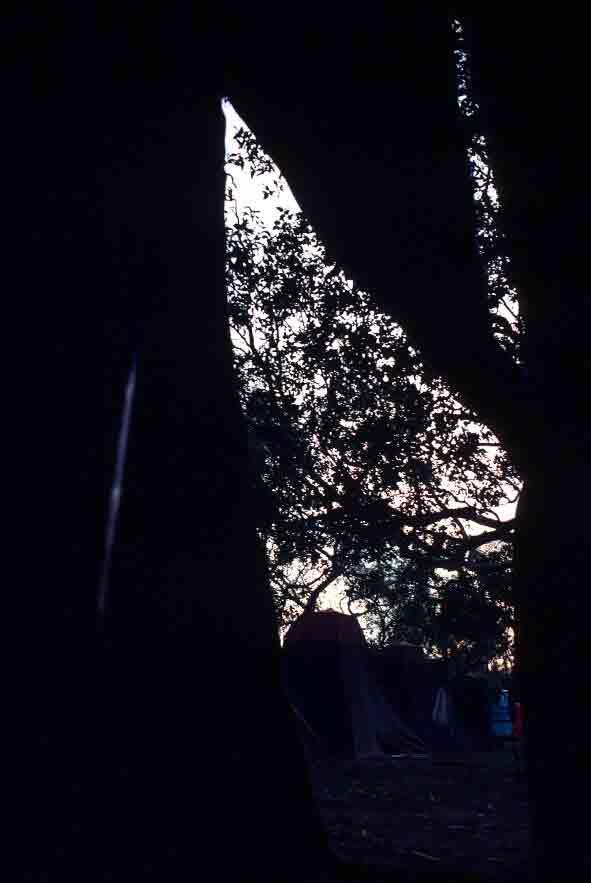 Tent-flap dawn in Broome