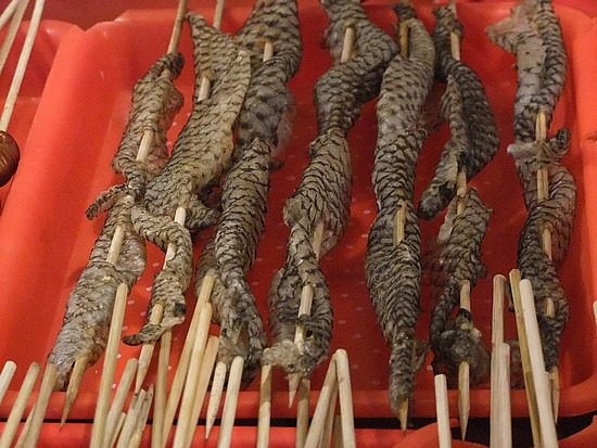 Snake Meat Walyou