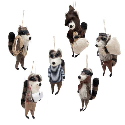 Roost racoon bandits
