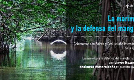 La defensa del manglar
