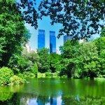 New York 5041532  340, WAM Partners