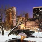 Winter Centralpark, WAM Partners