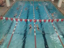 A practice in the old Alumni pool