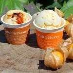 こだわりの製法とフレーバーが堪能できる手作りアイス「Hilo Homemade Ice Cream」
