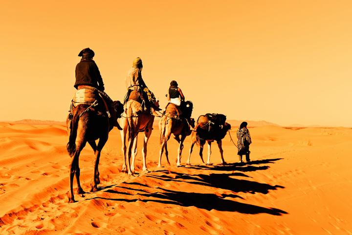埃及旅遊 騎駱駝