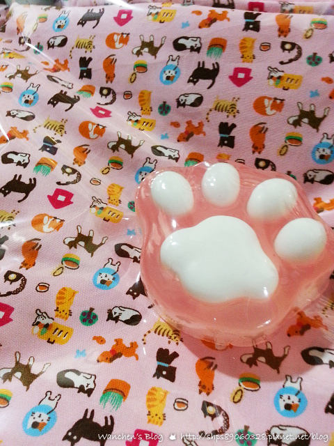 20140614華山貓咪送養_103501
