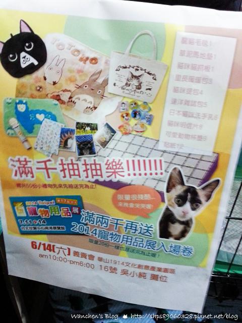 20140614華山貓咪送養_102219