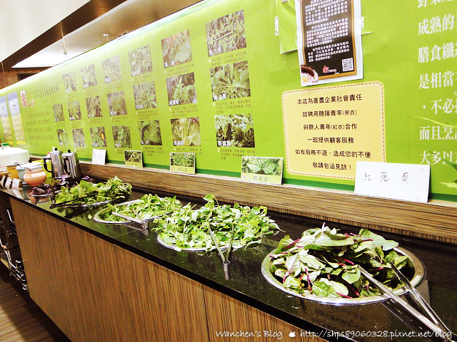 櫻之田野養生野菜鍋 九品蓮花鍋