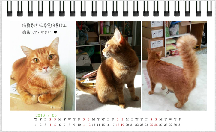 2019-3cats-calendar-201905