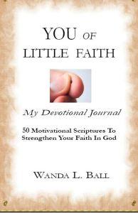 You Of Little Faith cover