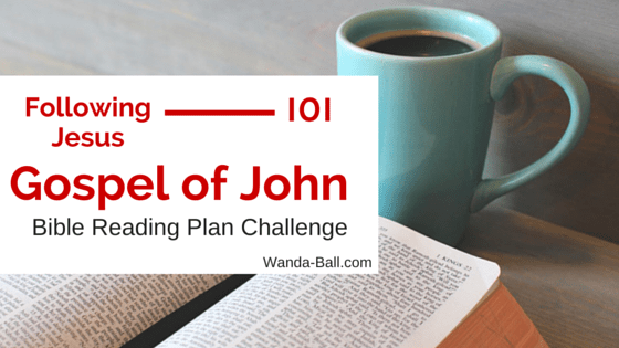Following Jesus 101: Gospel of John – Bible Reading Plan Challenge