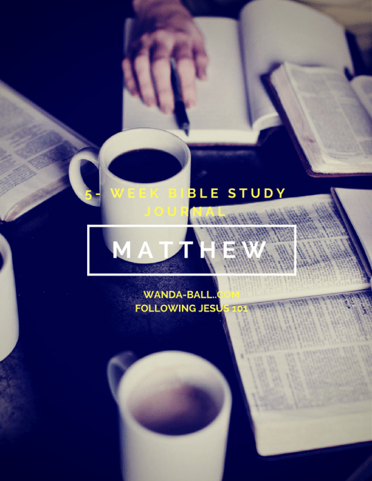 Matthew bible study journal pic