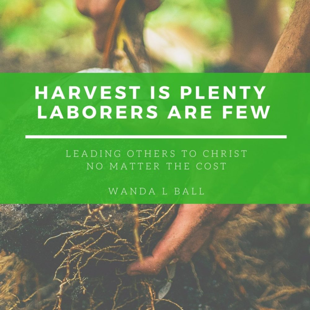 harvest is plenty laborers are few cover