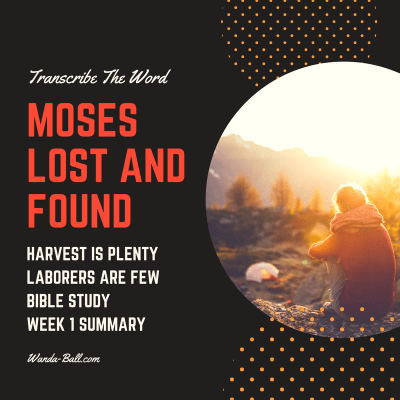 Transcribe The Word: Moses-Lost and Found-Bible Study Week 1 Summary