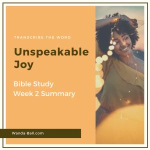 Unspeakable Joy week 2 summary