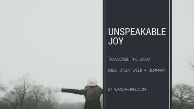 Unspeakable Joy week 4 summary