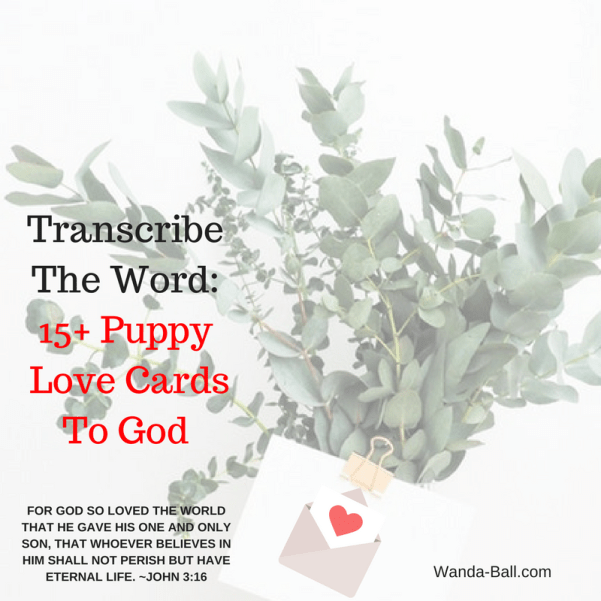 Transcribe The Word_15+ Puppy Love Cards To God Cover