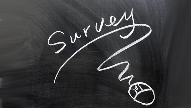 survey_photo620x350