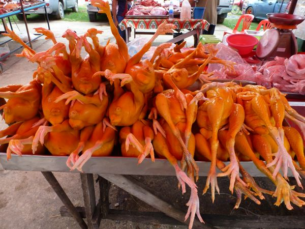 yellow chickens for sale Phuket Thailand