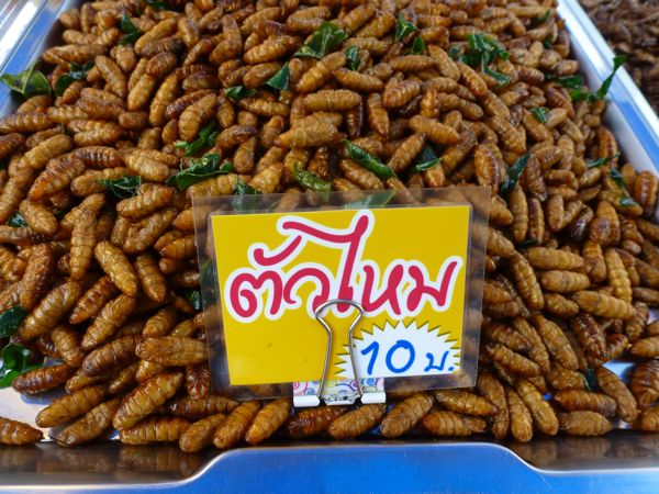More like worms than bugs for sale at the Nai Yang market.