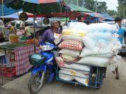 The iceman cometh to the Nai Yang farmers market.