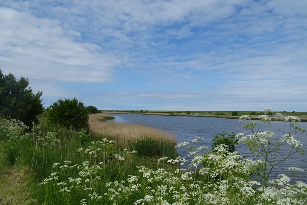 Waddenzee Ost-Friesland