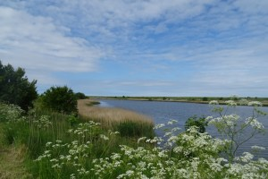 Waddenzee Ost-Friesland