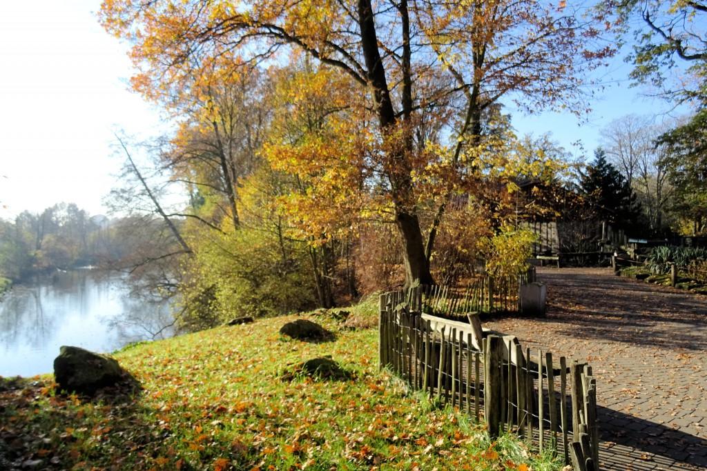 Tierpark Nordhorn Duitsland