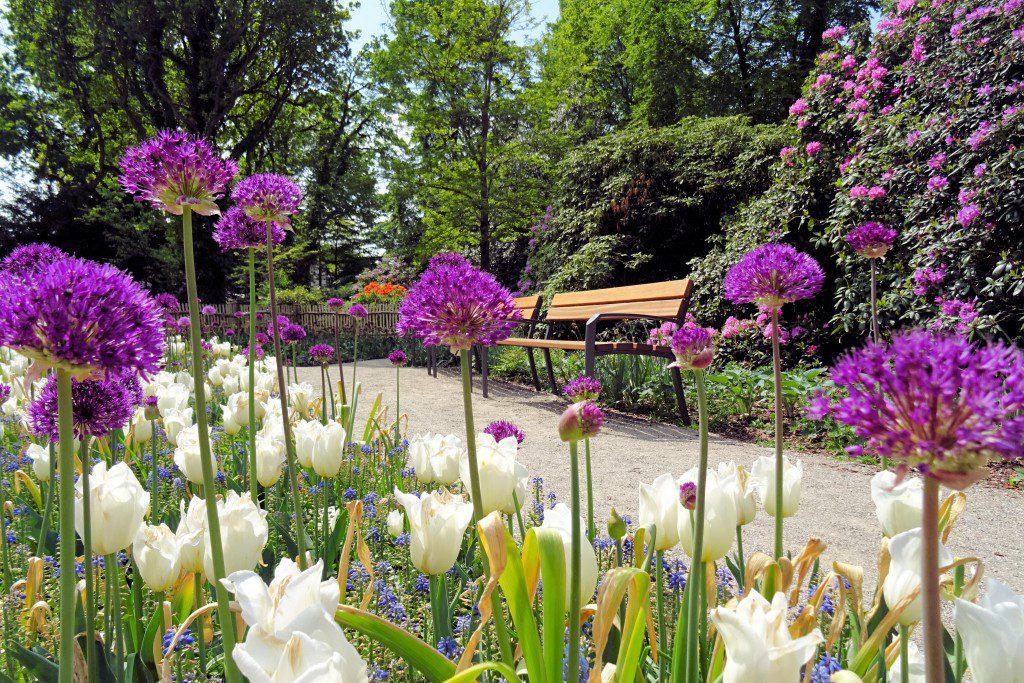 Kuurpark Duitsland