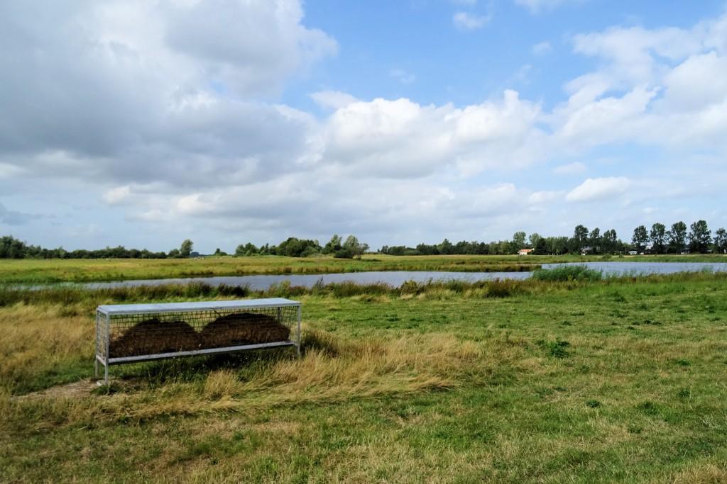 Leinwijk Kropswolde